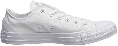 Converse Chuck Taylor All Star Seasonal-Ox Sneaker