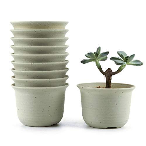 T4U 9CM Plastik Runde Sukkulenten Töpfe Kaktus Pflanze Töpfe Mini Blumentöpfe Weiß 10er Set