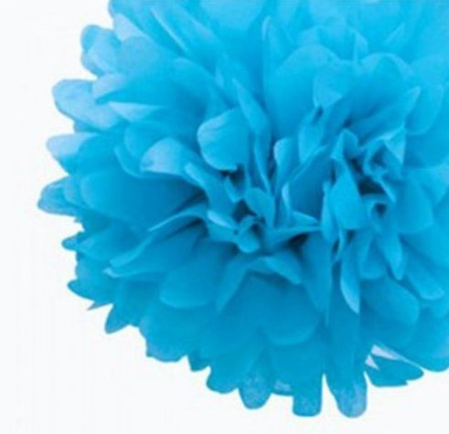 ANKKO 50ST Pompons Seidenpapier Pom Pom Blumen Ball für Festival Hochzeit Geburtstag Party im freien Dekoration - Weiß