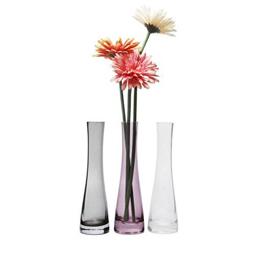 ComSaf 21cm Schmale Zylinderische Glasvesen, Transparente Dekovasen für einzelne Blume 3er-Set