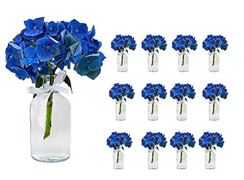 casavetro 12 x kleine Vasen Set New-Bost-100-Band inklusiver Glasfläschen Flasche Glas klar Deko Blumen-Vase Hochzeit (12 x 100 ml Schleife Weiss)