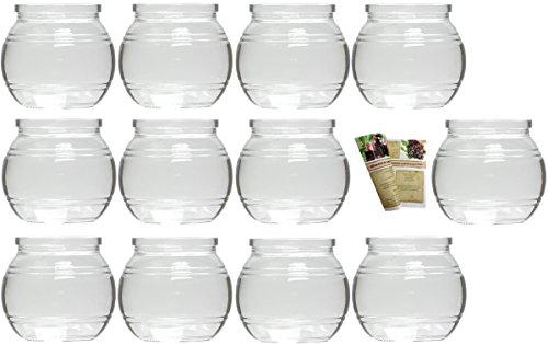 gouveo 12er Set Teelichtgläser Vintage und 28-seitige Flaschendiscount-Rezeptbroschüre Windlichter, Windlichthalter, Vase