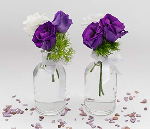 casa-vetro 12 x kleine Vasen Set New-Bost-100-Band inklusiver Glasfläschen Flasche Glas klar Deko Blumen-Vase Hochzeit (12 x Schleife Weiss)