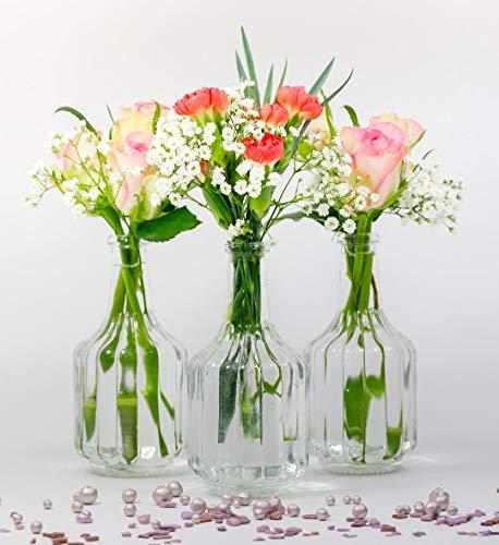 casavetro 12 x kleine Vasen Glasflaschen HALSI Glasfläschchen Landhaus Vintage Vase Flasche Glas klar Mini Deko-Flaschen Vasen (12 x)