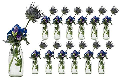 casavetro 12 x Glasfläschchen im Landhausstil Flasche Vase Tischvasen Glasflaschen Dekoflaschen Väschen Vasen Glasvasen (12 x 250)