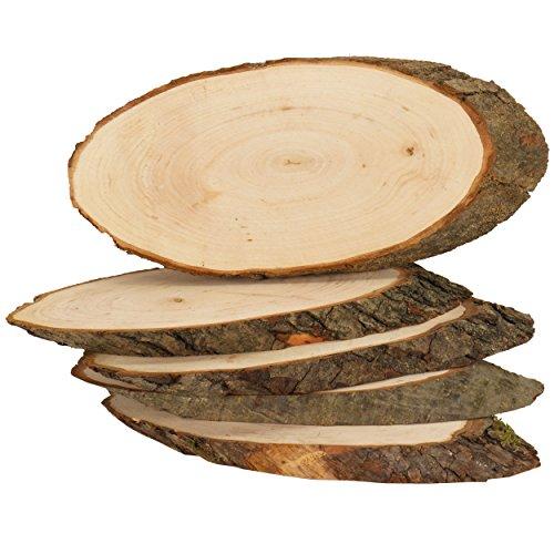trendmarkt24 Rindenscheiben Erle 5 Stück ovale Holzscheiben 23-26 cm lang 9-11cm breit Baumscheibe Erlenholz Naturprodukt große Naturholzscheibe unbehandelt Holzscheiben mit Rinde Rindenscheiben 4026