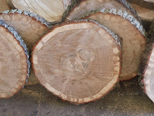 KJR Holzmanufaktur Baumscheibe, Holzscheibe,ca. 40x5 cm, basteln, Holz,Eiche