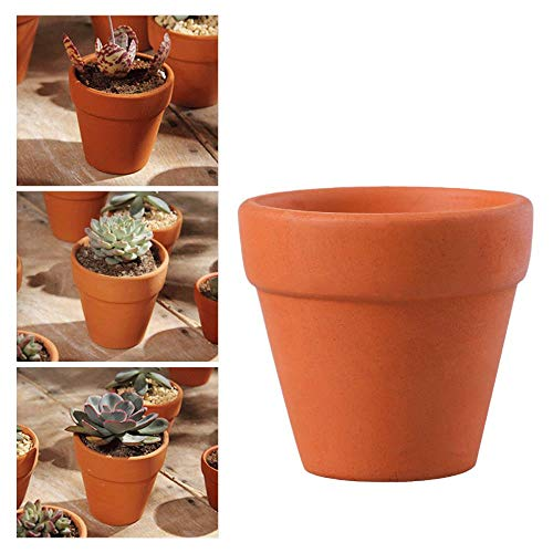 LIKEZZ 10 Stücke Kleine Mini Terrakotta Topf Ton Keramik Keramik Übertopf Kaktus Blumentöpfe Sukkulenten Kindergarten Pflanzen Garten Topf Liefert, 5,5x5 cm