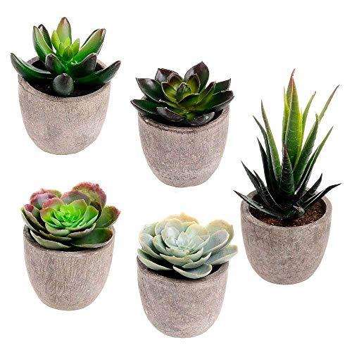 5er Set Sukkulenten 7 x 8cm Kunstpflanze Grün Weiß Kunstblume Deko mit grauen Töpfen