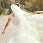Hübsche und günstige Schleier für die Braut bei Amazon