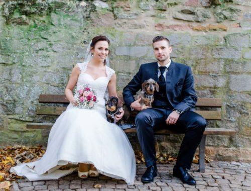 So klappt es mit dem Hund bei der Hochzeit