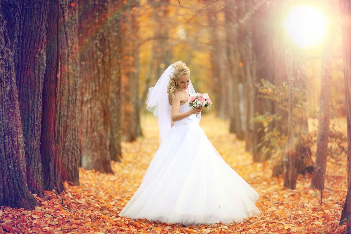 Ausgewählte Brautkleider in Ivory und Weiß bei Amazon