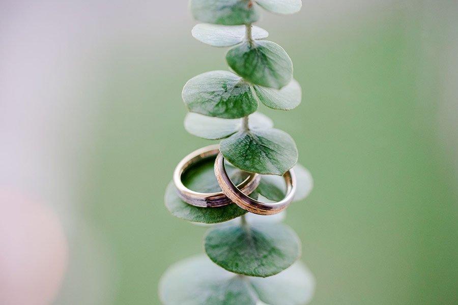 Heiraten-im-Dresdner-Zwinger-So-schoen-kann-dort-eine-Hochzeit-sein-27