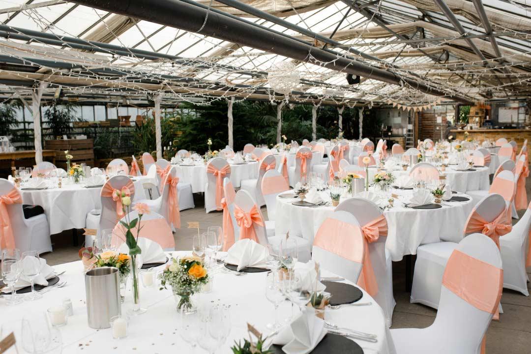 Hochzeit Im Gewachshaus Biodom Esslingen