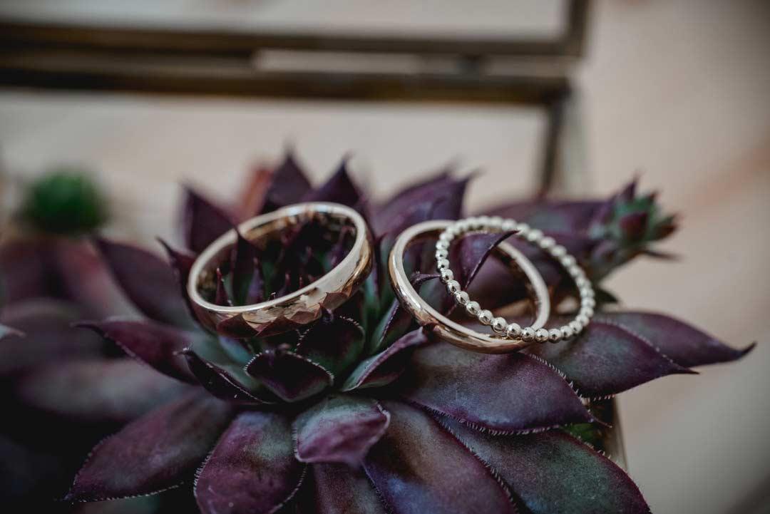 Nahaufnahme der Ringe im Ringkästchen