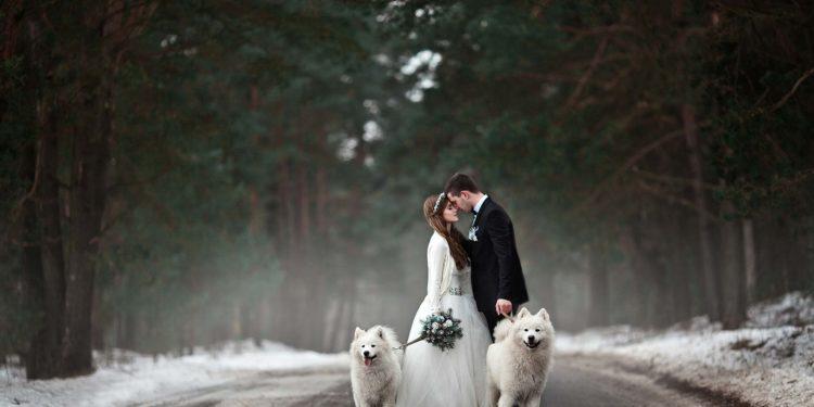 Wetter für eure Hochzeit im Januar