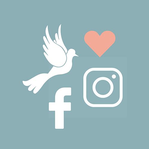 Besucher, die über Social Media zu uns gelangen