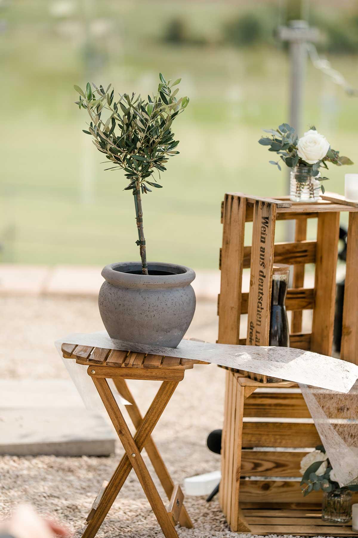 Baum bei der Hochzeit pflanzen